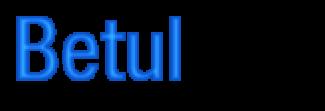 BetulCity