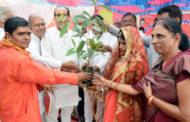 पौधे दहेज में लेकर दुल्हन हुई विदा, किराड़ समाज का सामूहिक विवाह सम्मेलन संपन्न, शरीक हुए कई दिग्गज नेता